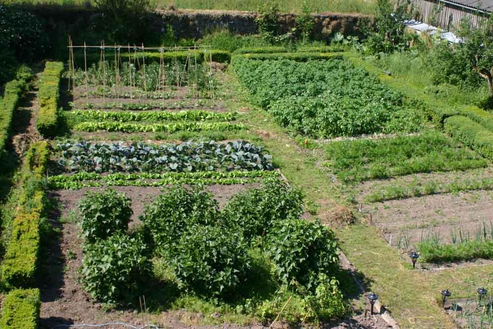 Cormiston farm two acres of grounds around the 4 star b for Kitchen garden layout