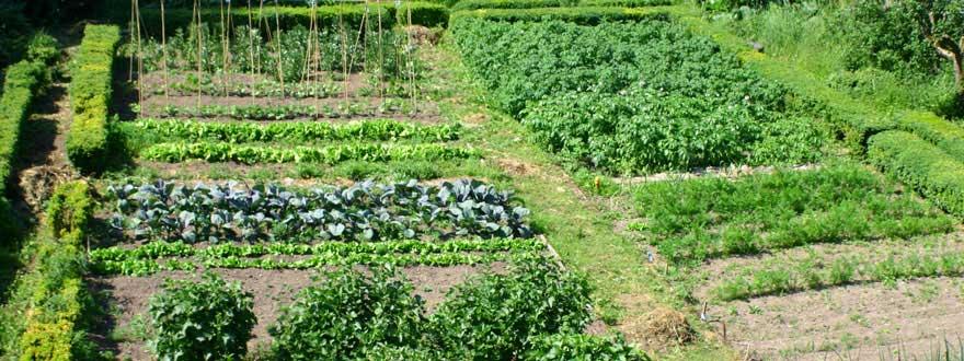 Cormiston Farm Two Acres Of Grounds